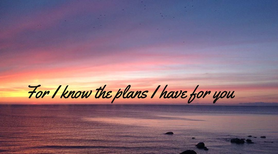 How God Shows His Plans to You