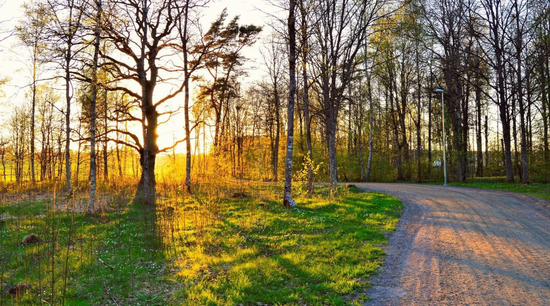 3 Ways Spring is Good For Your Soul